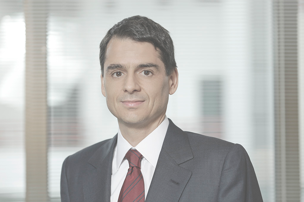 Estêvão Mallet, Lawyer
